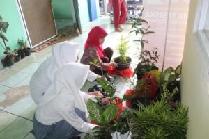 Pembina dan Anggota OSIS sedang membereskan tanaman